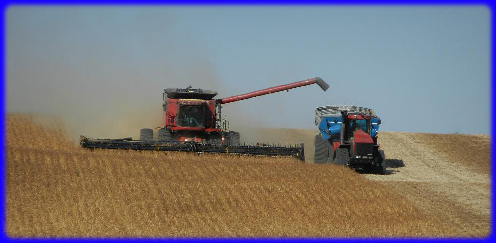 Johnson Harvesting
